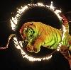 Цирки в Киржаче